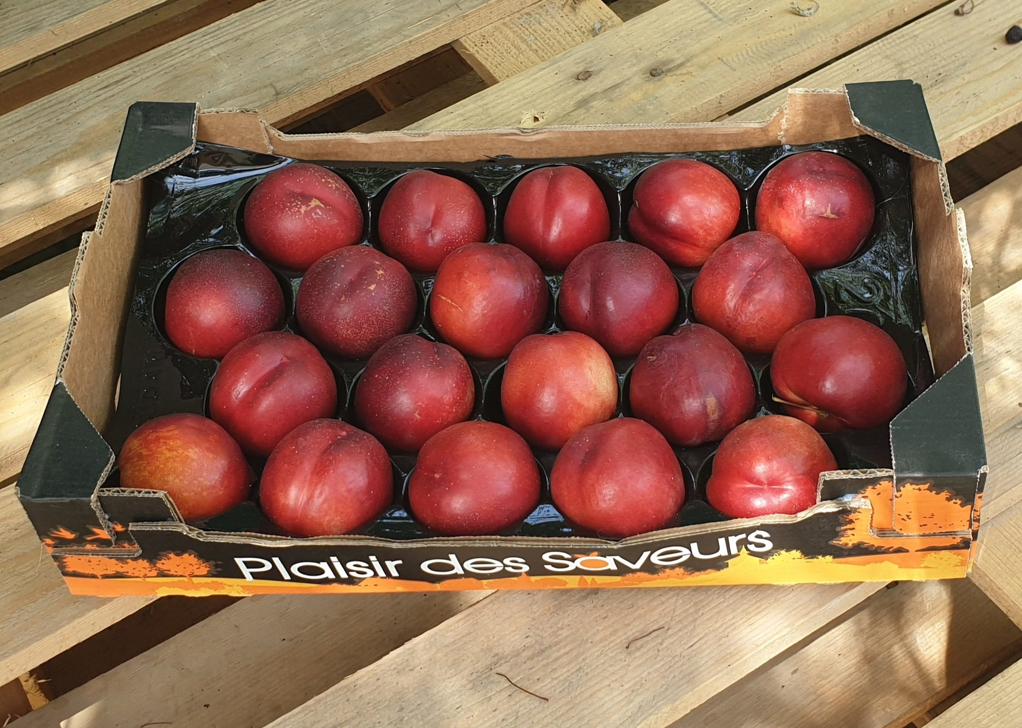 Caisse de Nectarines Blanches