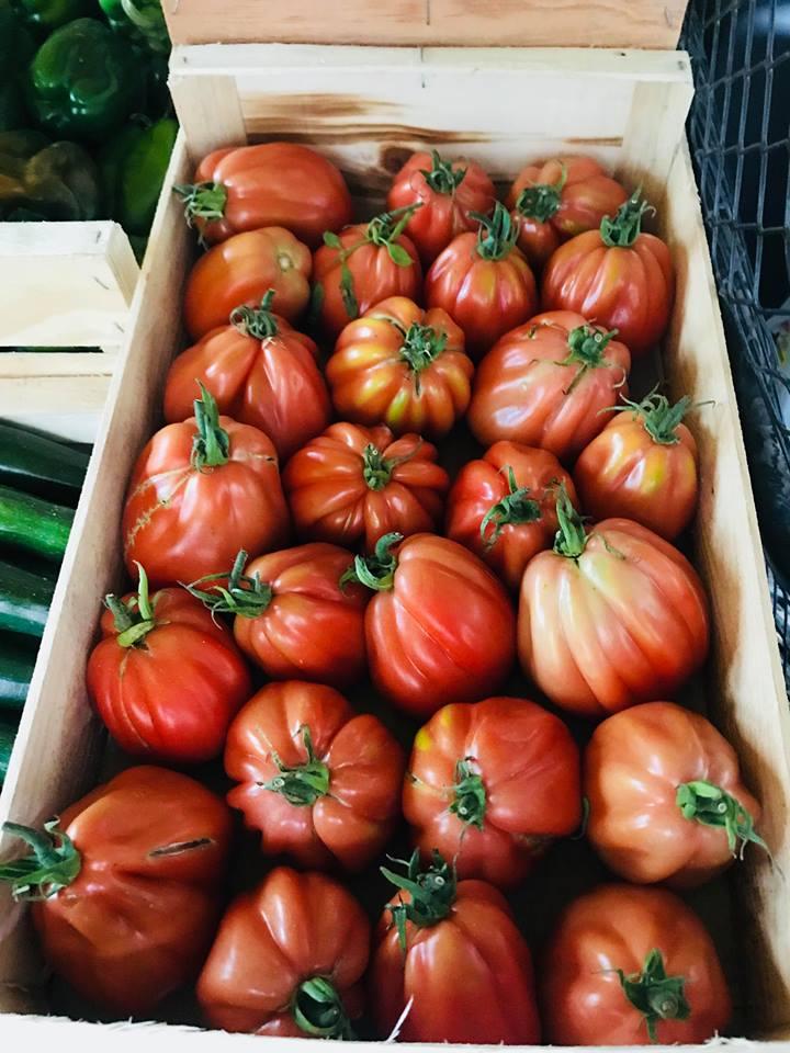 Caisse de Tomates Anciennes