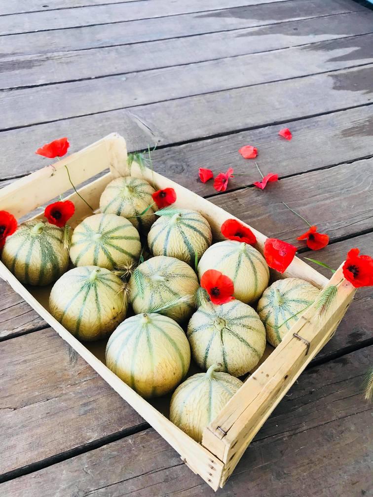 Caisse de Melons